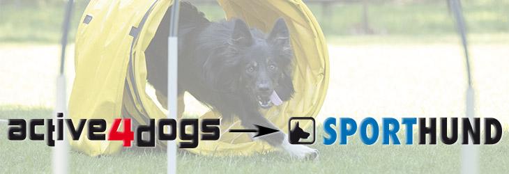 active4dogs wird zu Sporthund